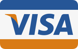 Pay for your assignment through VISA
